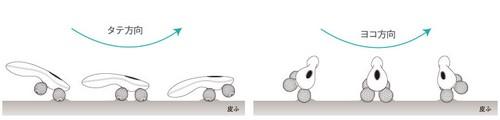 リファ4カラットの使い方